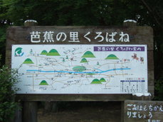 2007_05290004